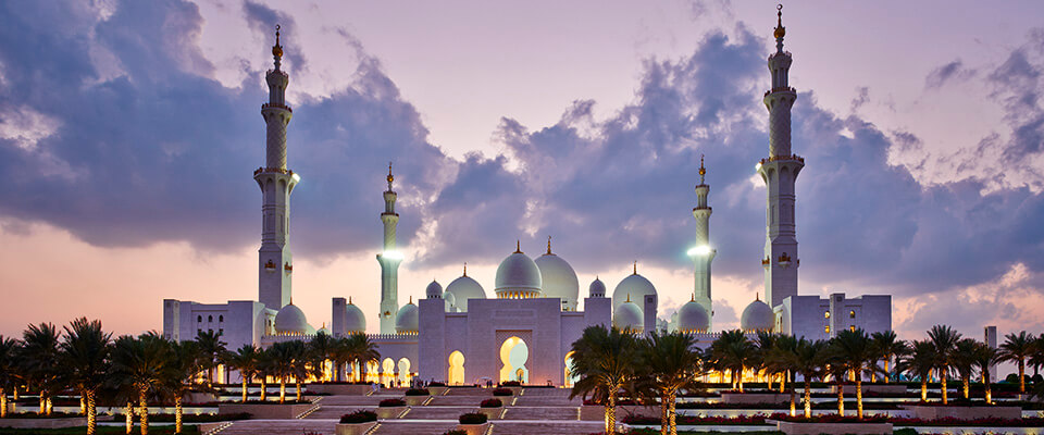 Sheikh Zayed Grand Mosque - customised dust jacket